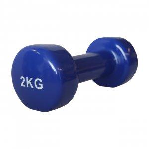 Pegasus® Βάρη Βινυλίου - 2 kg (τεμάχιο) B-7900-20