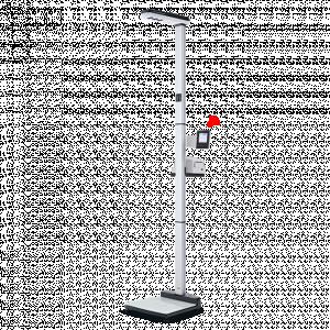 Ψηφιακή Ζυγαριά & Αναστημόμετρο Υπερήχων (Class III) Seca 287 - Σε 12 άτοκες δόσεις