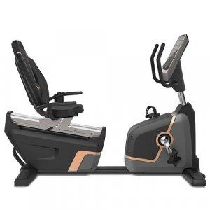 Καθιστό Ποδήλατο Επαγγελματικό Viking® R-007 Pro Bike - Σε 12 άτοκες δόσεις